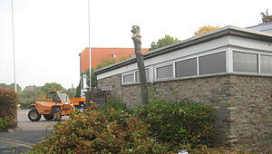 hed_baumfällung_131018